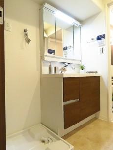エンゼルハイム大井 洗濯機置場と洗面化粧台