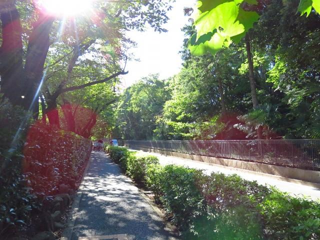 フリーディオ芝公園アネックス 増上寺周辺