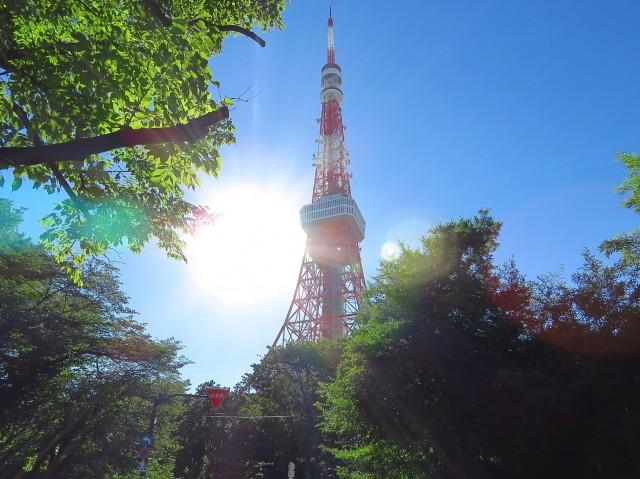 フリーディオ芝公園アネックス 東京タワー