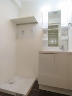 藤和三軒茶屋コープ 洗濯機置場と洗面化粧台