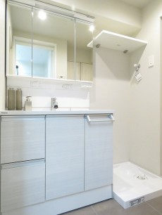 ライオンズマンション元麻布 洗面化粧台と洗濯機置場
