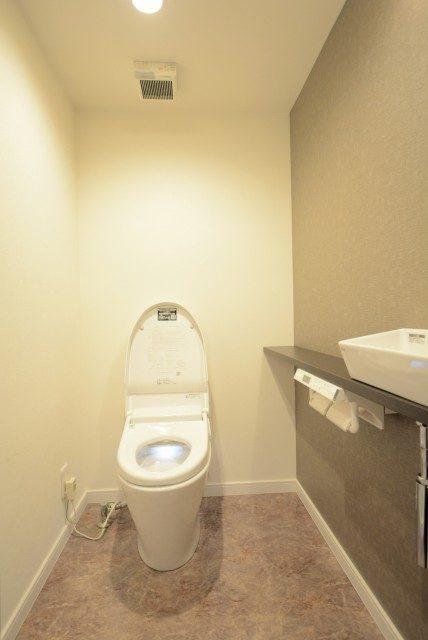 藤和シティホームズ新宿余丁町 トイレ1