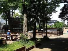 代々木グランドコーポラス 代々木ポニー公園