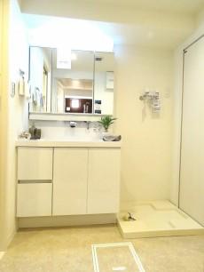 藤和島津山コープ 洗面化粧台と洗濯機置場