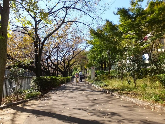 ベルディ早稲田東 江戸川公園