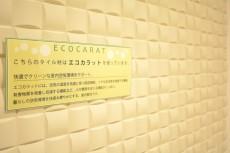 日商岩井豪徳寺マンション 玄関エコカラット