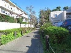 第一フォンタナ駒沢 マンション横の緑道