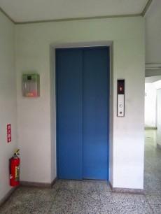 マコトパレス エレベーター