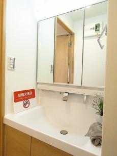 シャトー赤坂 洗面化粧台