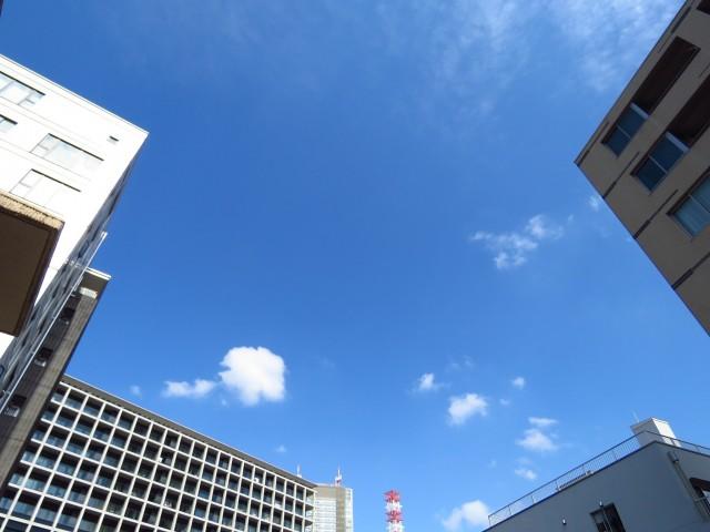 氷川アネックス2号館 ルーフバルコニー側眺望