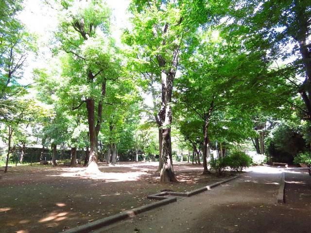 学芸大ゴールデンハイツ 中央緑地公園