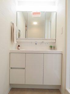 マコトパレス 洗濯化粧台