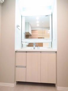 玉川スカイハイツ 洗面化粧台