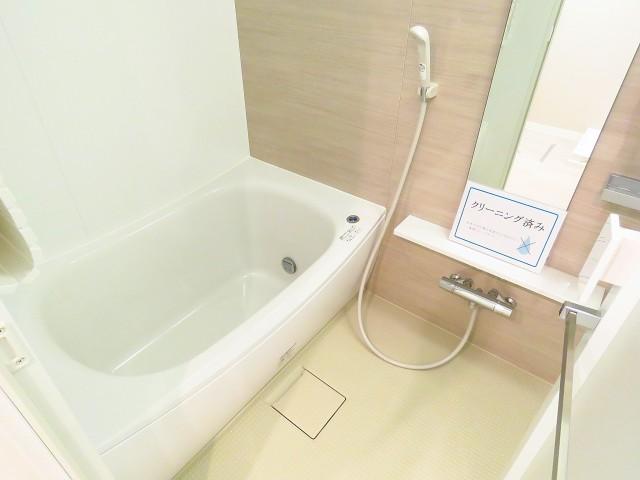 玉川スカイハイツ バスルーム