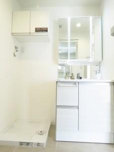 学芸大ゴールデンハイツ 洗濯機置場と洗面化粧台