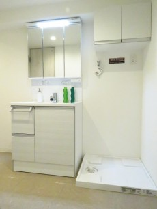 メゾン上野毛 洗面化粧台と洗濯機置場
