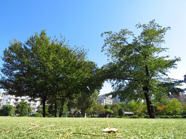 カルム第二赤坂 檜町公園