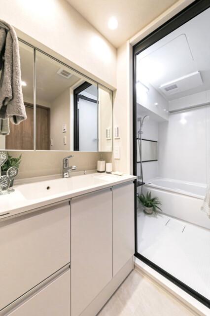 ライオンズマンション市ヶ谷 洗面室
