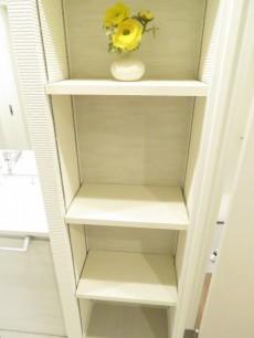ライオンズマンション北新宿 洗面室収納