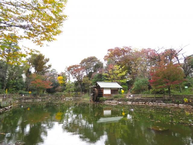 スタジオDEn渋谷 鍋島松濤公園