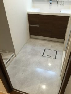 秀和新川レジデンス 洗面室