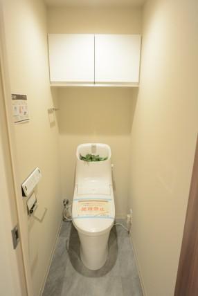 豊栄新都心マンション トイレ