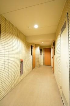 デュオ・スカーラ赤坂Ⅱ 内廊下