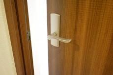 ヴィラージュ南青山 6.0帖洋室ドア