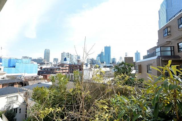 シャトー赤坂台 バルコニー眺望
