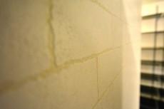 クレール島津山 壁面