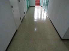 ヴェラハイツ新宿 共用廊下