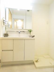 駒沢ガーデンハイツ 洗面化粧台と洗濯機置場