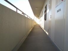 ユーカリハイツ都立大 共用廊下