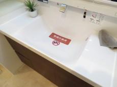 上野毛南パークホームズ 洗面化粧台