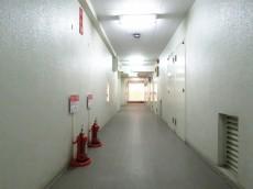 ニュー渋谷コーポラス 共用廊下