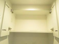 ライオンズマンション自由が丘 洗濯機置場上の収納