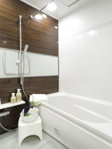 上野毛南パークホームズ バスルーム