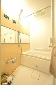 ニューウェルハイツ高輪 バスルーム