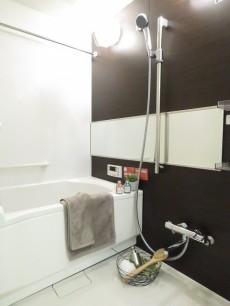 アイビハイツ南品川 バスルーム