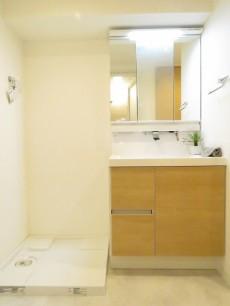平河町リリエンハイム 洗濯機置場と洗面化粧台