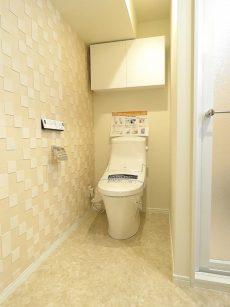 ミニカムマンション トイレ