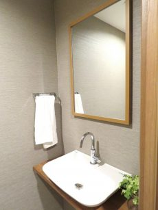 藤和渋谷常盤松ホームズ 手洗い場