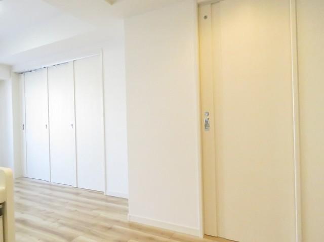 セザールアクアフロント勝どきイースト 洗面室・洋室扉