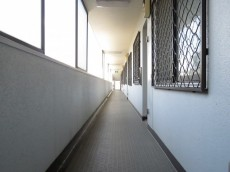 ハイラーク八雲 共用廊下