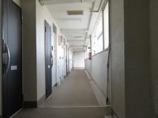 秀和築地レジデンス 共用廊下