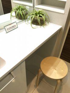 桜丘フラット 洗面室