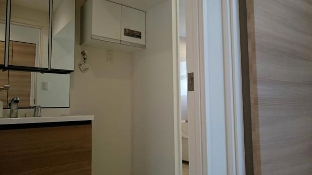 六本木ハイツ 301号(8)洗面台