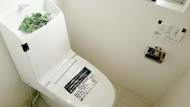 六本木ハイツ 301号(2)トイレ