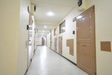 豊栄平町マンション302 廊下