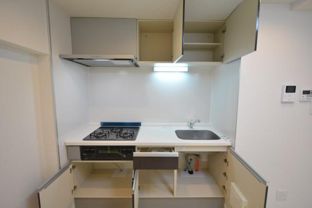 カーサ池尻 1204号室 収納